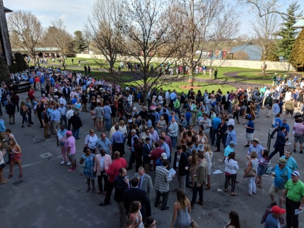 A beautiful draws large crowds